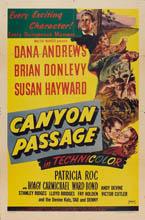 Le Passage du canyon - film