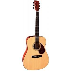 Pack Guitare acoustique folk VGS Pure Series D1  |