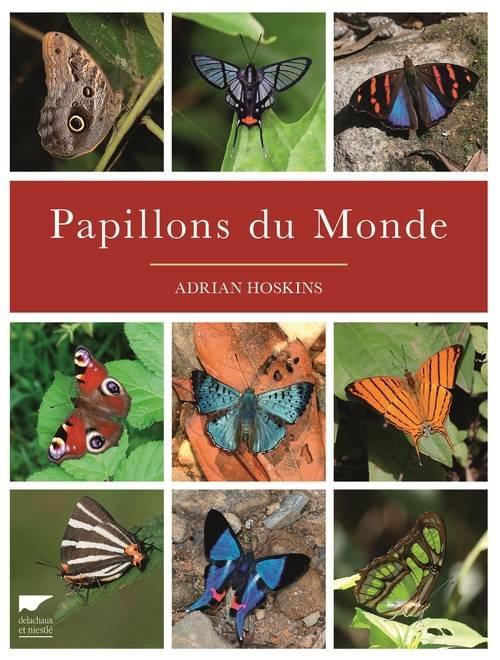 Papillons du monde | Adrian Hoskins. Auteur